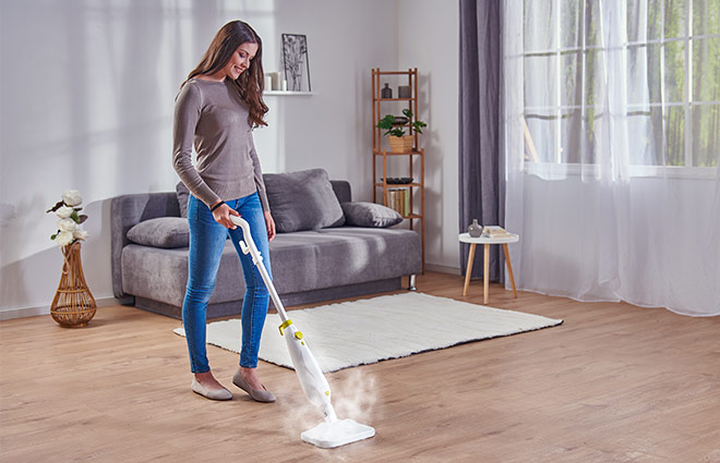 Rovus Nano Floor Steamer Plus